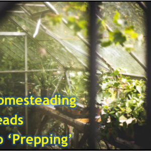 Homesteading Leads to Preparedness