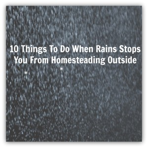 10 Things To Do When Rain Stops You From Homesteading Outside