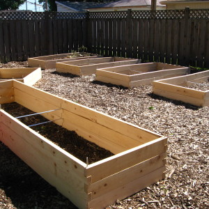 Raised Bed Gardening – Things to Consider