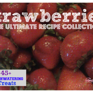 The ULTIMATE Strawberry Recipe Collection