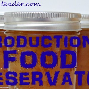 Getting Started In Food Preservation