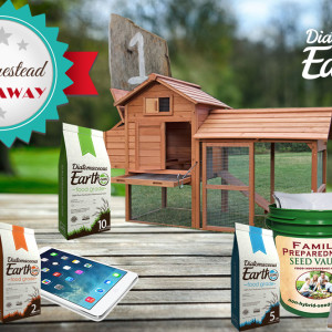 Homestead Giveaway from DiatomaceousEarth.com
