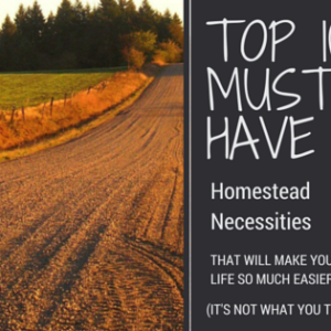 Top 10 Must-Have Items To Make Homesteading Easier