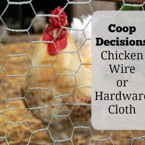 Chicken Wire or Hardware Cloth for Coops