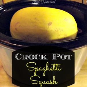 Cooking Spaghetti Squash in the Crockpot