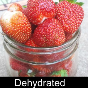 Preserving Strawberries – Drying
