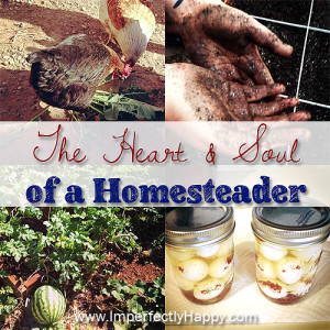 Homesteading Heart and Soul