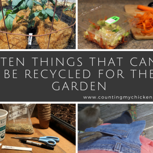 10 Things That Can Be Recycled for the Garden