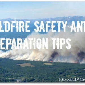 Wildfire Safety and Preparation Tips