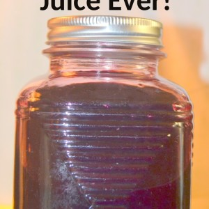 OMGoodness! The Very Best Blueberry Juice Ever!