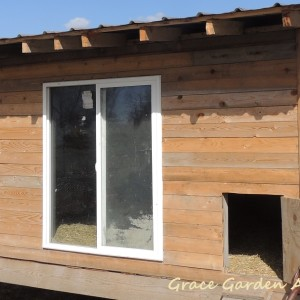 The Most Affordable Chicken Coop