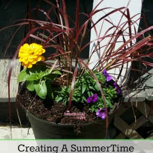 Creating a Beautiful Summer Blossoming Display With Monrovia Plants