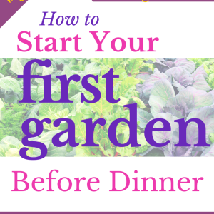 How to Start A Garden Before Dinner–The Fast Start eGuide for Beginners