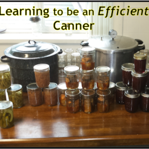 Lessons on Being an Efficient Canner