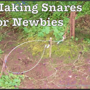 Making-Snares-for-Newbies
