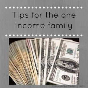 Tips for the one income family