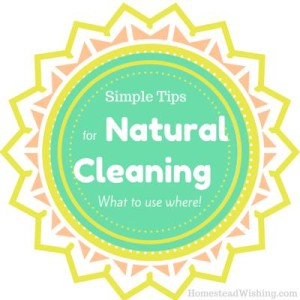 Simple Tips for Natural Cleaning