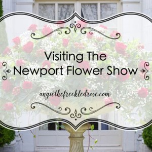 Visiting The Newport Flower Show