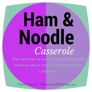 Ham, Cheese, and Noodle Casserole