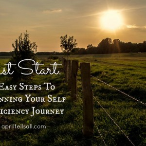 Just Start — 6 Easy Steps To Begin Your Self Sufficiency Journey
