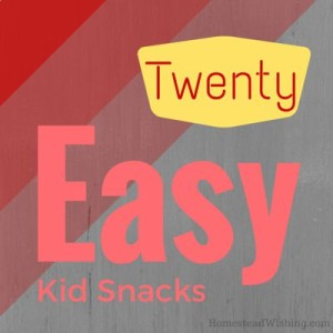 20+ Easy & Healthy Kid Snacks