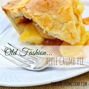 Old Fashion Crumb Pie