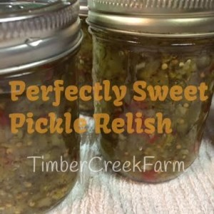 Pickle Relish Recipes and A Canning Cookbook Review