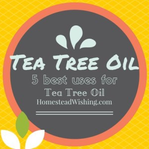 5 Best Ways to Use Tea Tree Oil