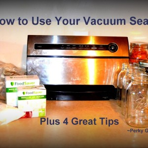 How to Use Your FoodSaver: Plus 4 Great Tips