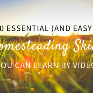 40 Essential Homesteading Skills You Can Learn By Video