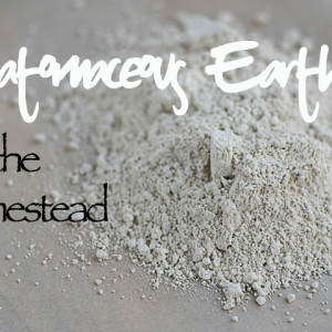 Diatomaceous Earth on the Homestead