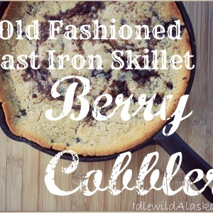 Old Fashioned Cast Iron Skillet Berry Cobbler