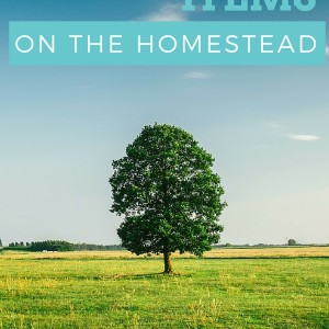 30 Must Have Items For Every Homestead