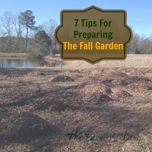 7 Tips For Preparing The Fall Garden
