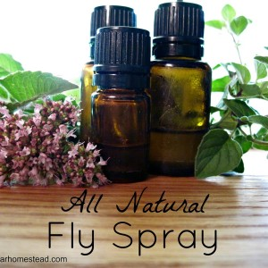Natural Homemade Fly Spray