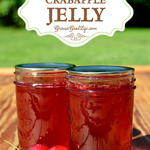 Crabapple Jelly with No Additional Pectin