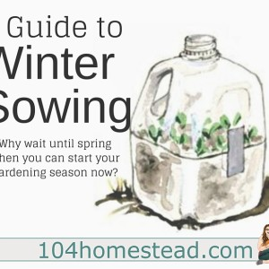A Guide to Winter Sowing Anywhere