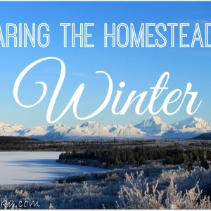 Preparing the Homestead for Winter