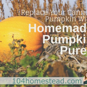 Replace Your Canned Pumpkin with Homemade Organic Puree