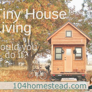 Tiny Houses: Could You Do It?