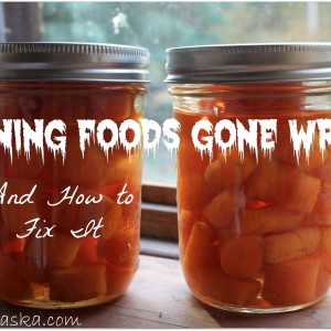 Canning Foods Gone Wrong and How to Fix It