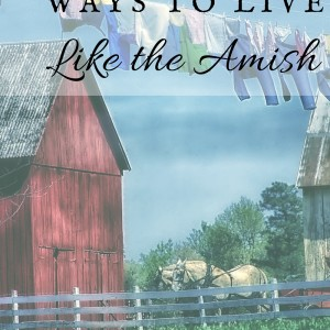 23 Ways To Live The Amish Lifestyle