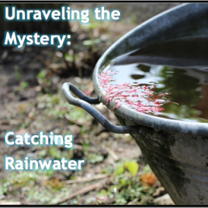 Unraveling the Mystery: Catching Rainwater
