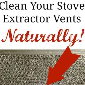 Natural Vent Hood Filter Degreasing