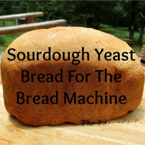 Easy Sourdough Yeast Bread For The Bread Machine