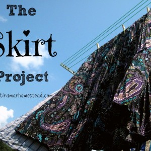 The Skirt Project