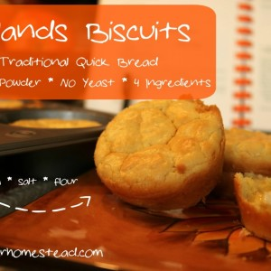 Laplands: A Traditional Quick Bread Recipe