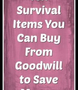 10 Survival Items to Buy at Thrift Stores