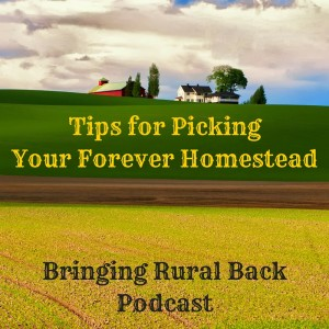 Tips for Picking Your Forever Homestead