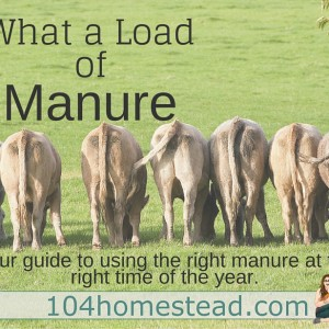 What a load of… Manure?